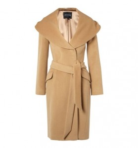 Feminine Style with a Shawl Collar & Belted Style (Hobbs)